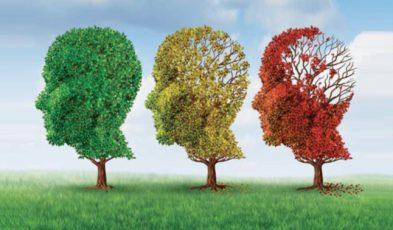 Les troubles cognitifs du sujet âgé